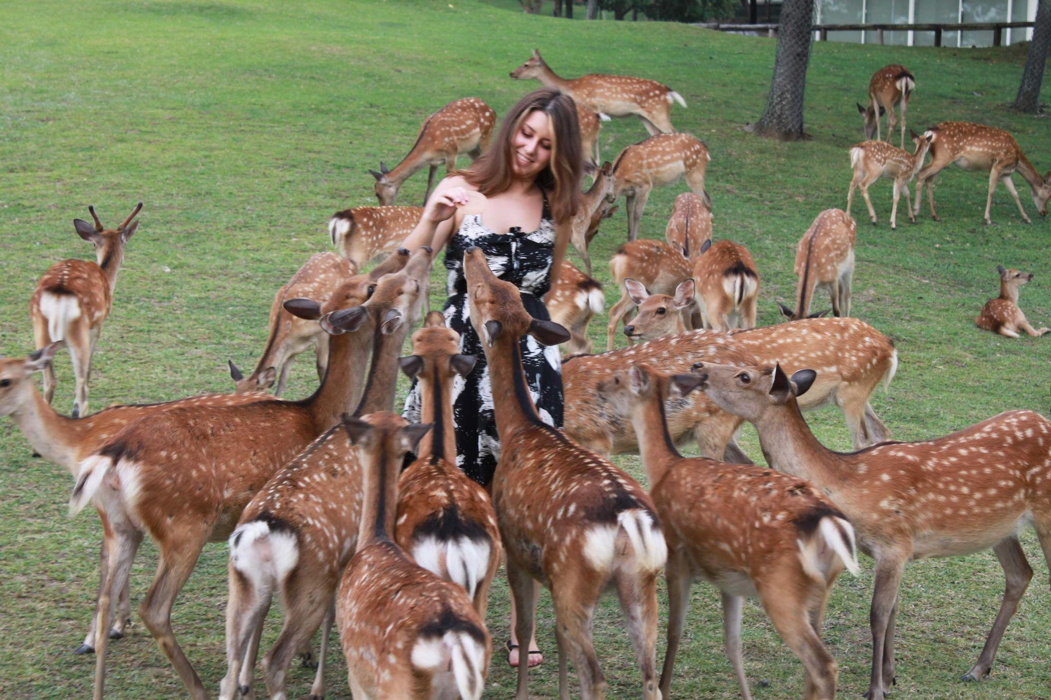 Наташа Бирюкова с оленями в Наре. Из личного архива героини
