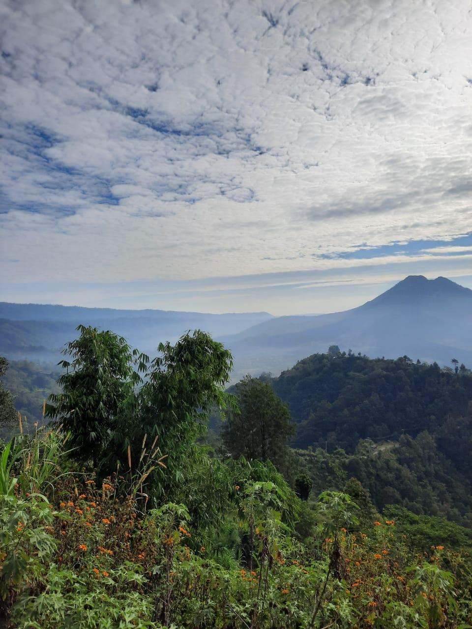 Природа Бали. Фото предоставлено героем интервью