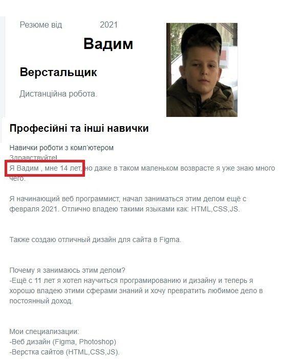 Резюме Вадима