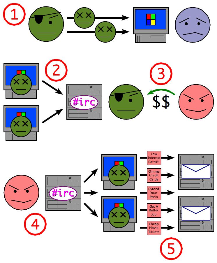 Схема создания ботнета и использования его спамером